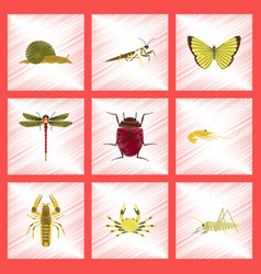 assembly flat shading style bug snail butterfly vector image
