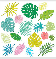 Trendy summer tropical palm leaves jungle leaves 1 vector