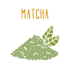 Matcha tea powder vector