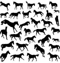 horses set vector image