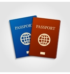 Blue and red passports vector image vector image
