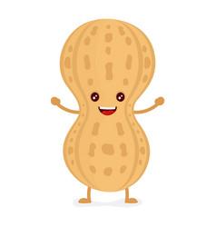 happy smiling cute peanut flat vector image