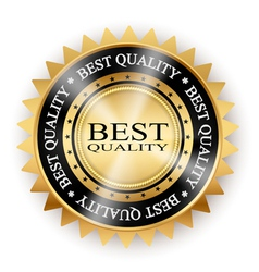 icon best quality vector image vector image