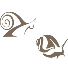 snail sign vector image vector image