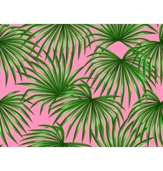 Seamless pattern with palms leaves decorative vector