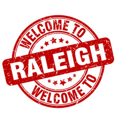 welcome to raleigh vector image vector image