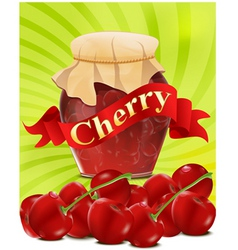Cherry jar vector