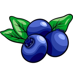 blueberry fruits cartoon vector image vector image