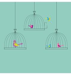 Color Birds vector image vector image