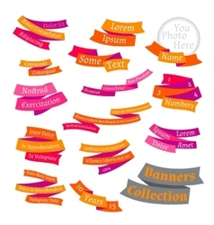 Set of bright labels and ribbons vector