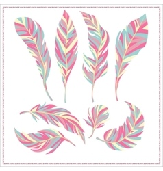 Set of decorative feathers vector image vector image
