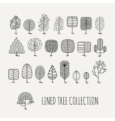 Set of lined trees simple style vector