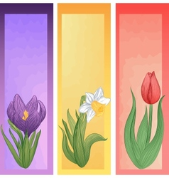 Set of spring banners with hand-drawn flowers vector image