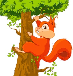 Squirrel on the tree vector image vector image