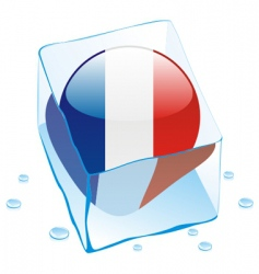 frozen button flag of france vector image