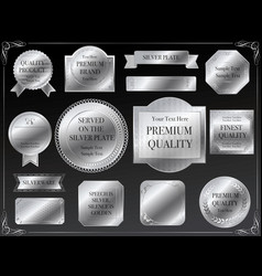 a set of various silver ftames vector image vector image