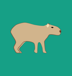 Capybara animal vector
