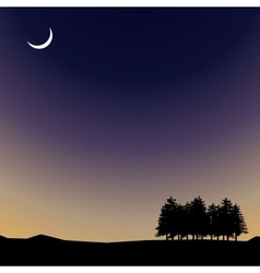 Night time sky nature landscape with moon vector image