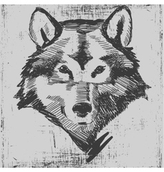 Wolf head hand drawn sketch grunge texture vector