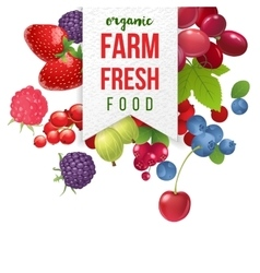 farm fresh emblem with berries vector image