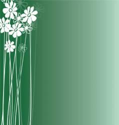 flower white vector image vector image