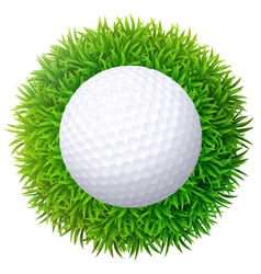 Ball for golf on green grass isolated on white bac vector