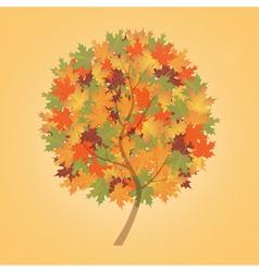 Autumn tree maple vector