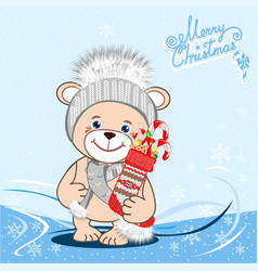 Teddy bear in a knitted hat with a bubo vector
