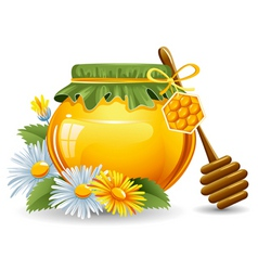 honey vector image
