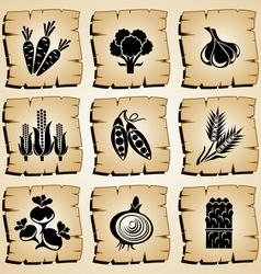 Icons vegetables vector