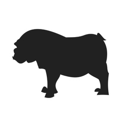 Bulldog black silhouette vector image vector image