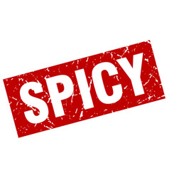 Square grunge red spicy stamp vector