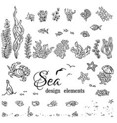Set of underwater marine design elements vector