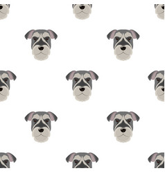 A breed of a dog a risen schnauzerrisen vector
