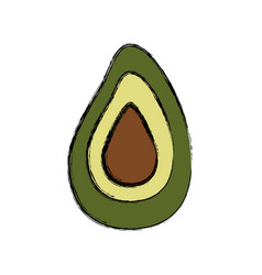 Avocado food natural vector