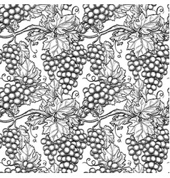 seamless pattern with grapes vector image