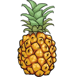 Pineapple fruit cartoon vector
