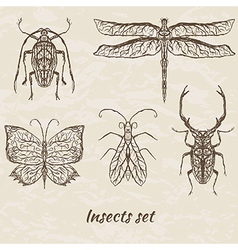 set of abstract insects vector image