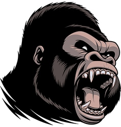 The fierce gorilla head vector image