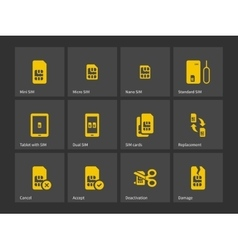 Set of sim cards different sizes icons vector