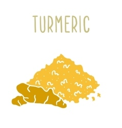Turmeric powder and root vector