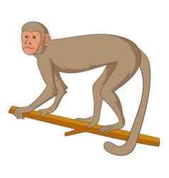 macaque icon cartoon style vector image vector image