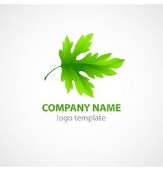 Template for a logo with green leaf vector image