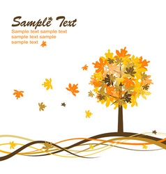 Maple autumn background eps10 vector