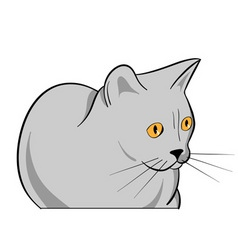 cartoon grey cat isolated on the white vector image vector image