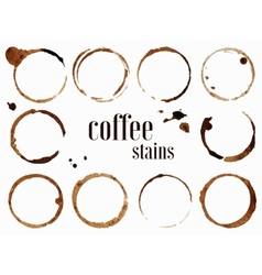 Coffee stains isolated vector