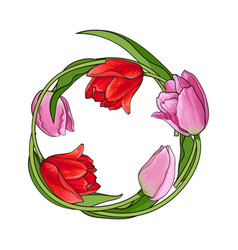 Round frame of red and pink tulip flowers with vector