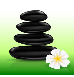 Stones spa with white flower for design vector