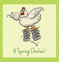 English idiom spring chicken vector