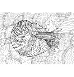 Nautilus with high details vector image